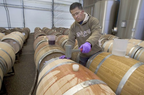 File:WineryBarrels.jpg