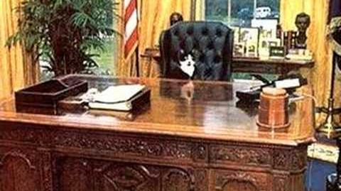 Socks the Cat 4 President 3rd Party Write-In