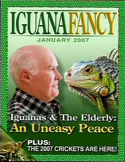 File:IguanaFancy.jpg
