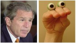 Hand-puppet bush