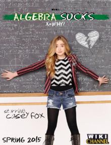 Algebra Sucks poster