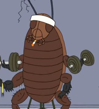 File:Cockroach.jpg