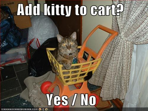 File:Funny-pictures-cat-shopping-cart.jpg