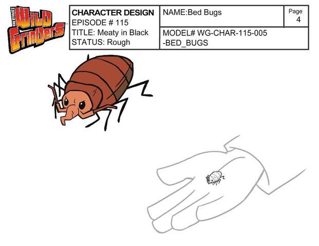 File:Bed Bug.jpg