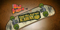 Good Dog, Bad Dog Academy