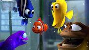 Nemo and friend