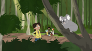 Aviva looking at Koala