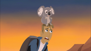 Koala Balloon and Martin Exhausted