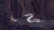 Rattlesnake Vs Ground Squirrel