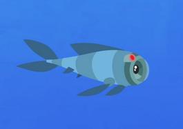 Fish-cam.01