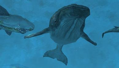 File:Marineworldanimalswikipic.png