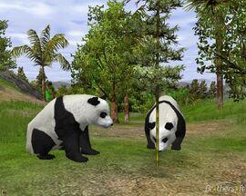 Wildlife park 2 patch-289349-1253167162