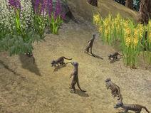 Kolekce-wildlife-park-2-a-crazy-zoo-05