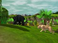 Wildlife Park 3 20120614 123357