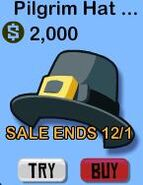Pilgrim hat 1