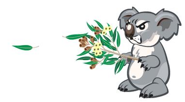 Koalaabilitylol