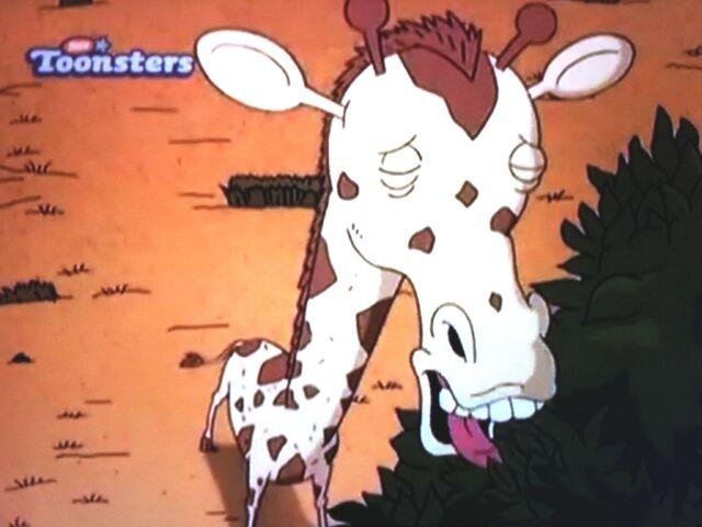 File:Giraffe Browsing and Watching Over a Herd.JPG