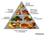 Food-guide-pyramid