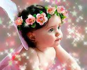 Baby-Photo-Gallery-9