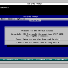 Windows 3.1 running a MS-DOS windowed program.