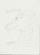 NightWing by VoidLegend