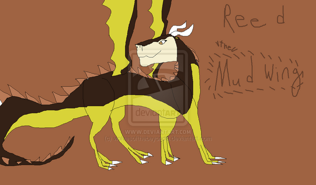 File:Reed the mudwing by wolvesofthebeyond0-d5u0lp1.png