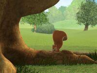 My Friends Tigger & Pooh - Squirrel