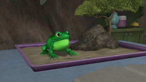Frog Squiggly