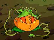 Mirta Pumpkin - Special 2 (1)
