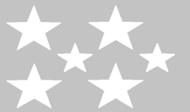 U.S.E. flag