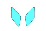 Diamond's wings (2)