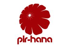 File:Pir-hana2048 B.png