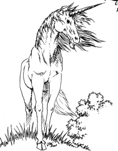 File:Unicorn RPG.jpg