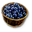 Tw3 blueberries
