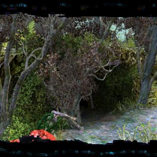 Jaskinia na bagnach