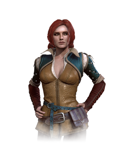 File:Tw3 journal triss.png