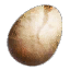 Tw3 harpy eggs