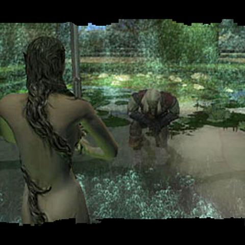 Geralt i Pani Jeziora