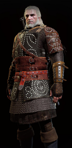 File:Tw3 hindarsfjall heavy armor full.png