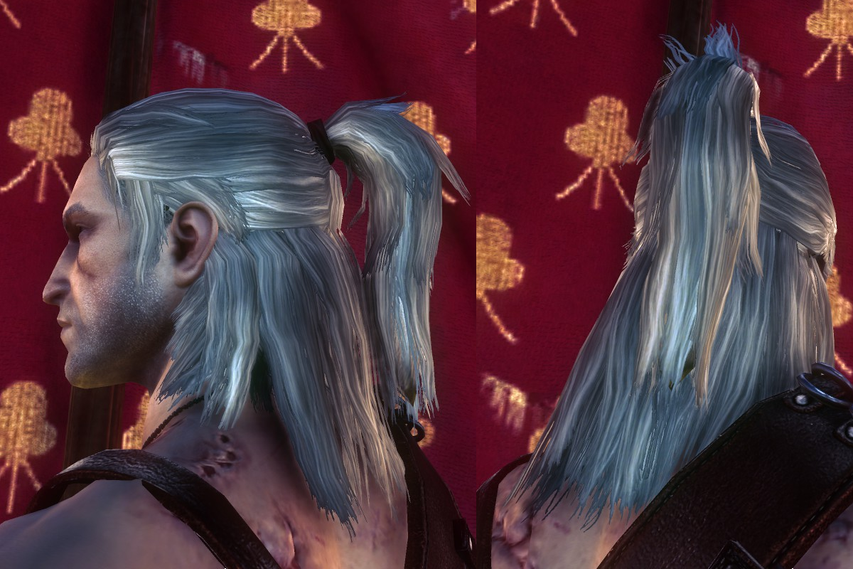 Witcher 3 Hair Styles: The Witcher 2 Hairstyles