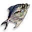 File:Tw3 fish.png