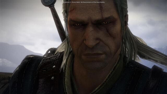 File:Witcher 2 assassins of kings the-5 (2).jpg