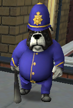 Sergeant Steeg