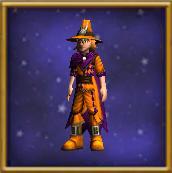 RobeofTributeMale-WizardCityRobes