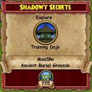 Shadowy Secrets