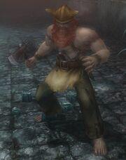 Novice fighter