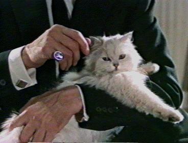 File:Blofeld.jpg