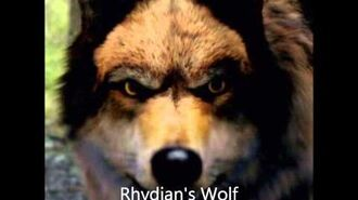 Wolfblood Characters