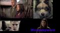 Thumbnail for version as of 05:36, November 21, 2013