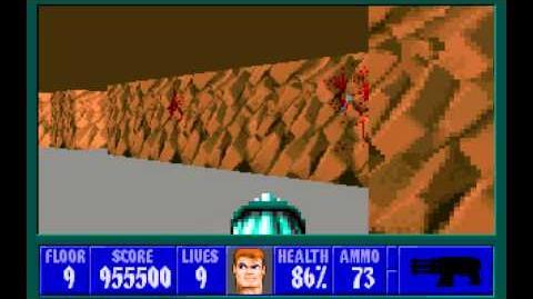 Wolfenstein 3D (id Software) (1992) Episode 6 - Confrontation - Floor 9 HD